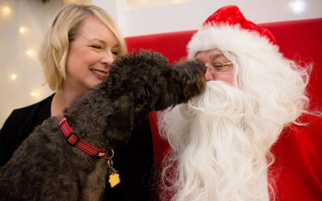 Pictures with Santa Recap